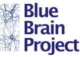 The Blue Brain Project